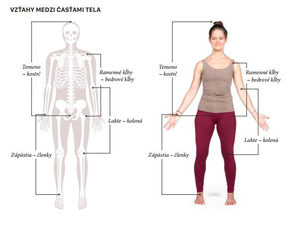 Vyvážené usporiadanie tela
